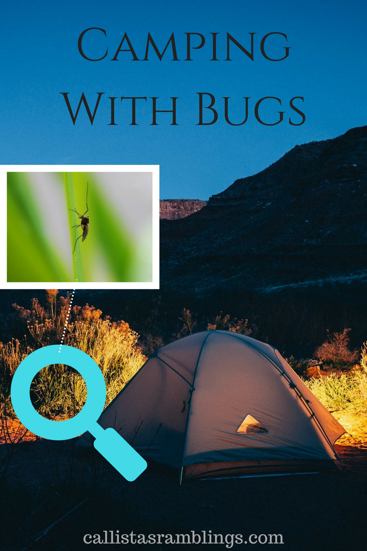 Camping With Bugs - Tips