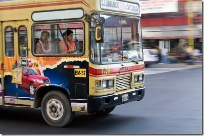 Public Transit Passes
