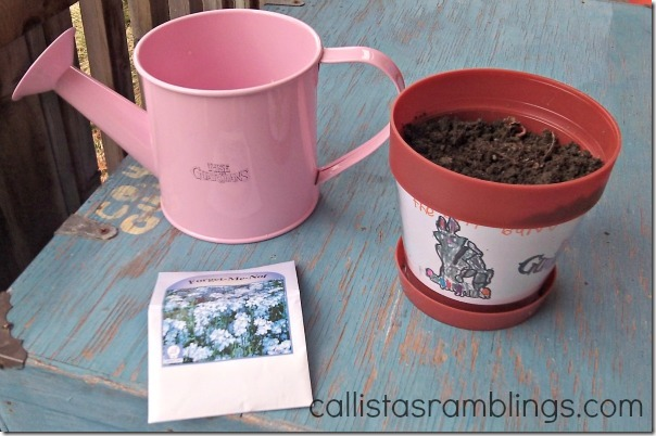 Rise of the Guardians Flower Pot, Watering Can and Some Forget Me Nots