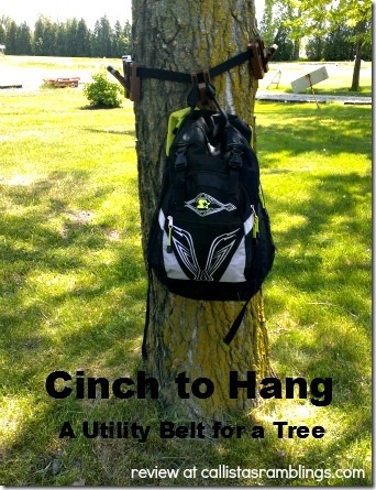 Cinch to Hang Review