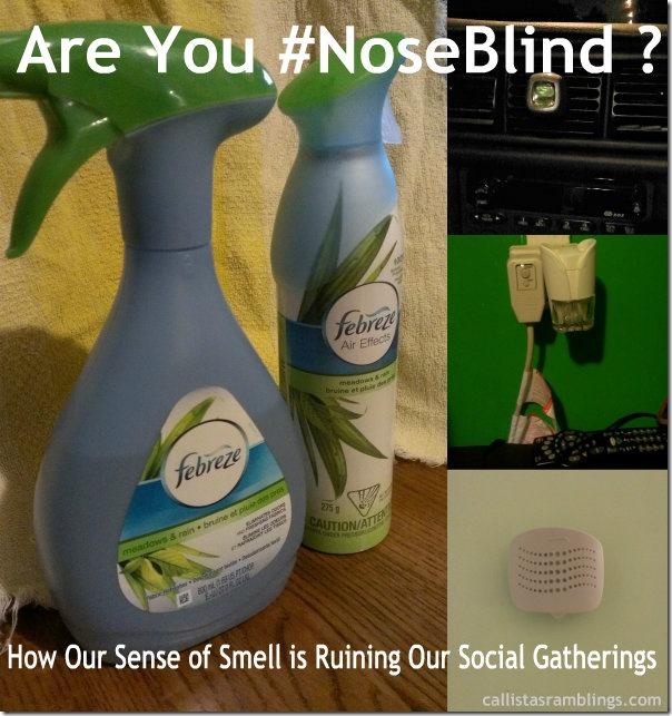 noseblind-pin
