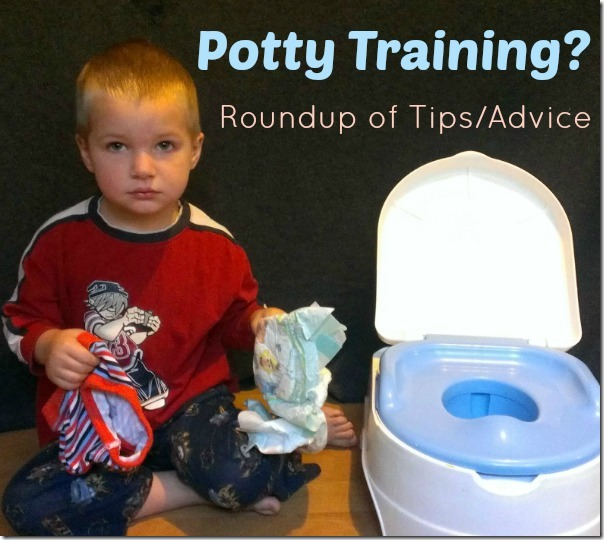 Potty Training? Roundup of Tips/Advice