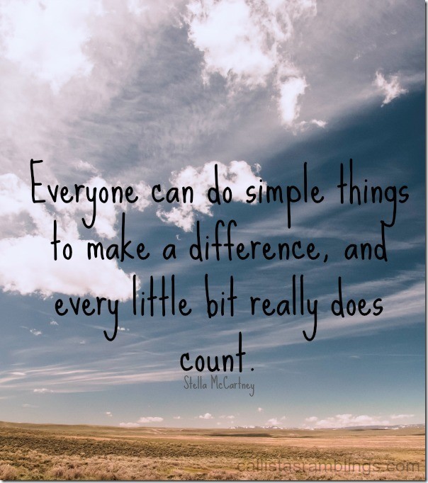 Every Little Bit Counts