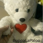 BuppaLaPaloo Bear Builds Self Confidence #CRHGG15