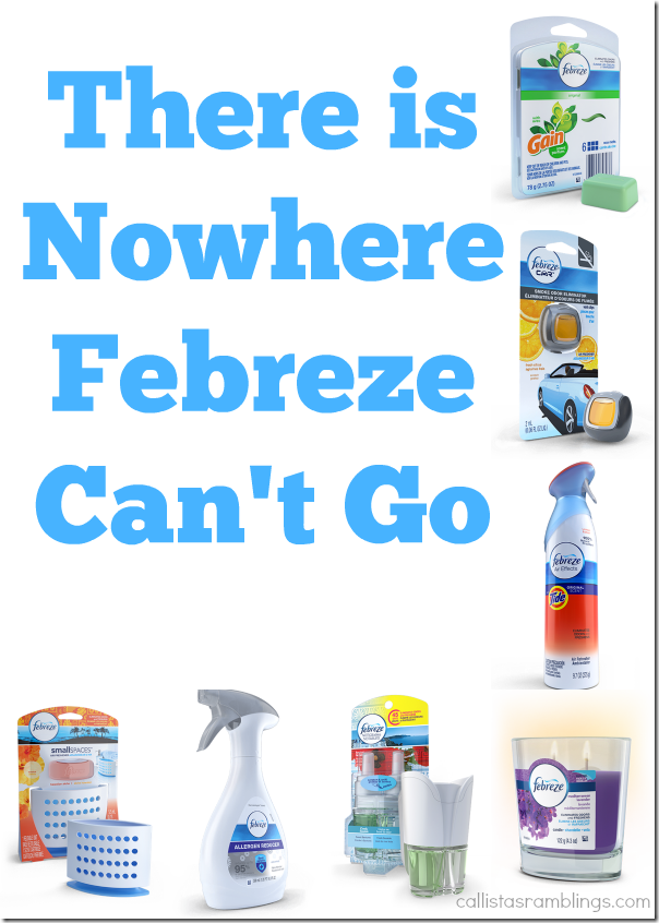 There is Nowhere Febreze Can't Go