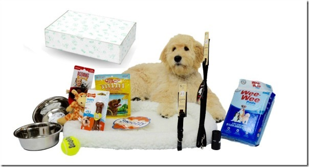 Puppy Starter Kits For Your New Puppy Callista S Ramblings