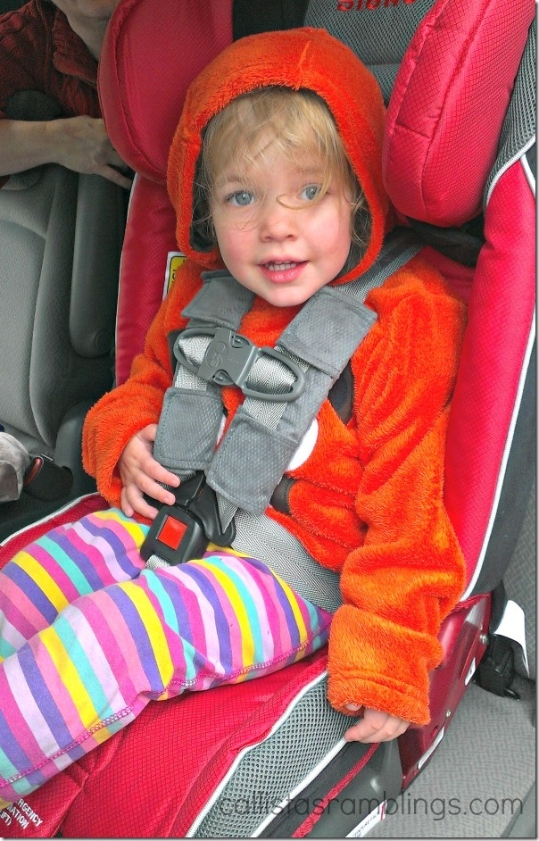 Diono Radian RXT Birth to Booster Car Seat Review