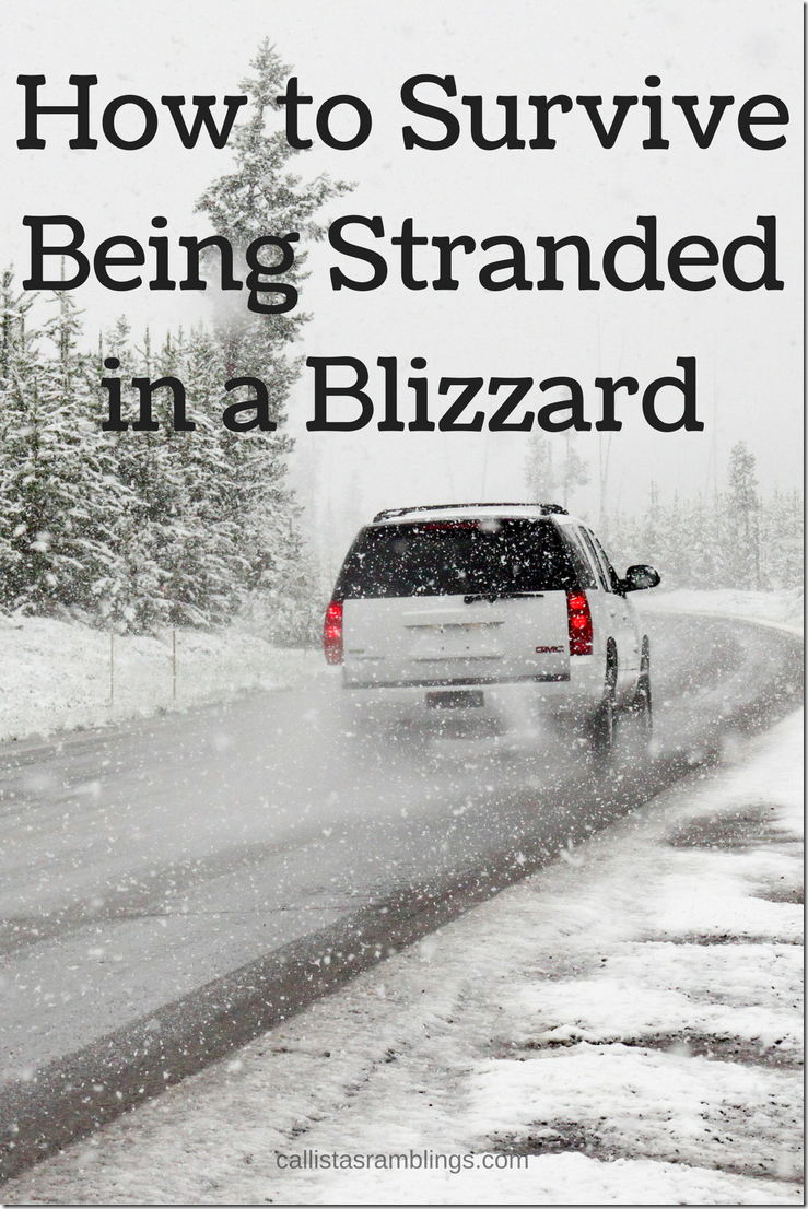 How to Survive Being Stranded in a Blizzard